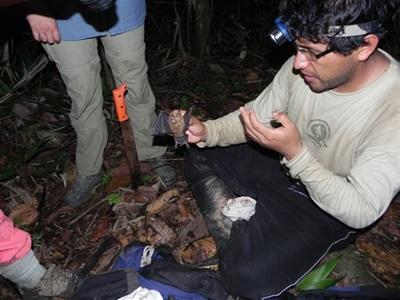 Mission écovolontariat au Pérou