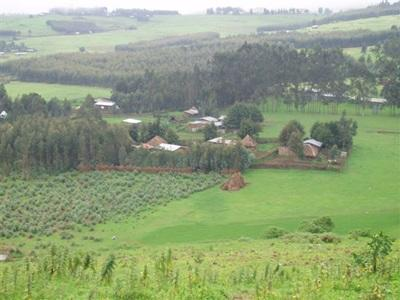 Paysage d'Ethiopie