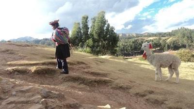 Mission de volontariat au Pérou, dans les Andes