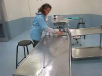 Travailler dans une clinique vétérinaire en Afrique