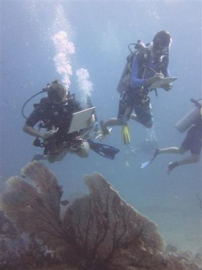 Conservation marine Thailande