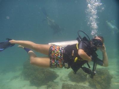 Plongée sous marine écovolontariat Thailande
