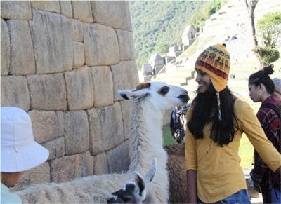 Zeynab bénévole au Pérou