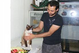 兽医与动物关爱项目