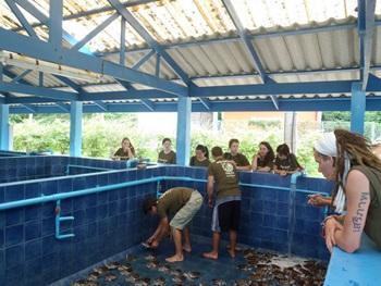 2 Week Special natuurbehoud in Thailand