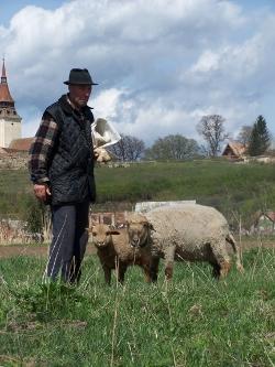Corinne Carton in Roemenië