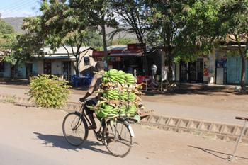 Gezondheidszorg in Tanzania