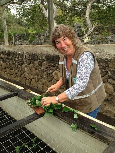 Jacqueline Nieuwesteeg - Natuurbehoud & Milieu project in Ecuador