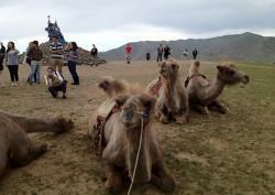 Lesgeefproject in Marokko en Geneeskundeproject in Mongolië – Josephine Mulder-Brussen